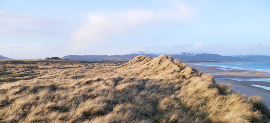 Coul Links looking North towards Ben Bhraggie February 2016
